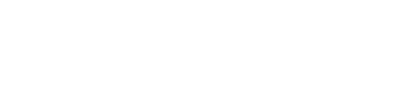 Admiral Private logo